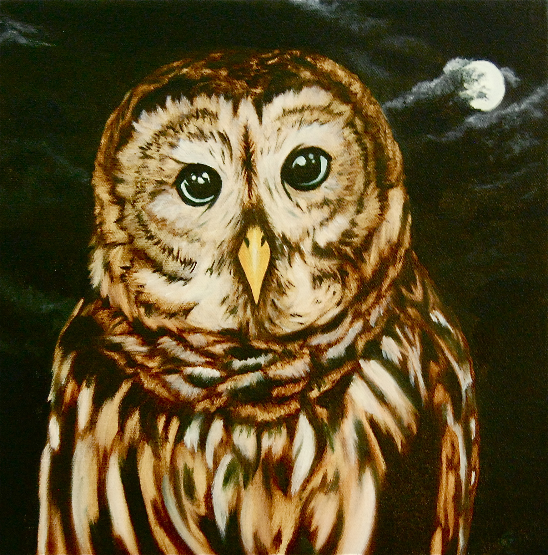 Untitled Owl